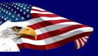BOINC USA Logo